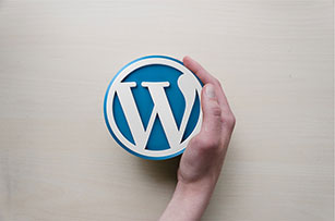 ressource-logo-wordpress