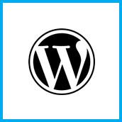 Wordpress le squelette du site